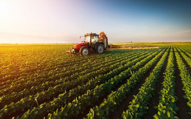 Secteur agricole : vers un renforcement du partenariat avec le Mexique