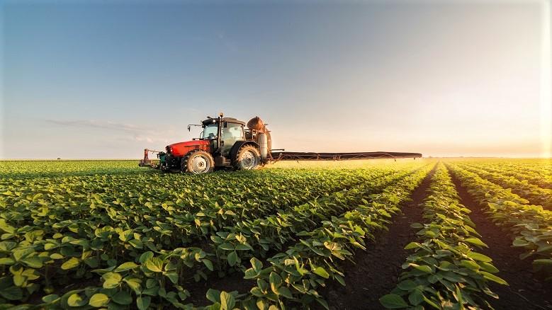 Maroc/Israël : Une conférence de haut niveau à l'ONU, sur la sécurité alimentaire et l'agriculture innovante