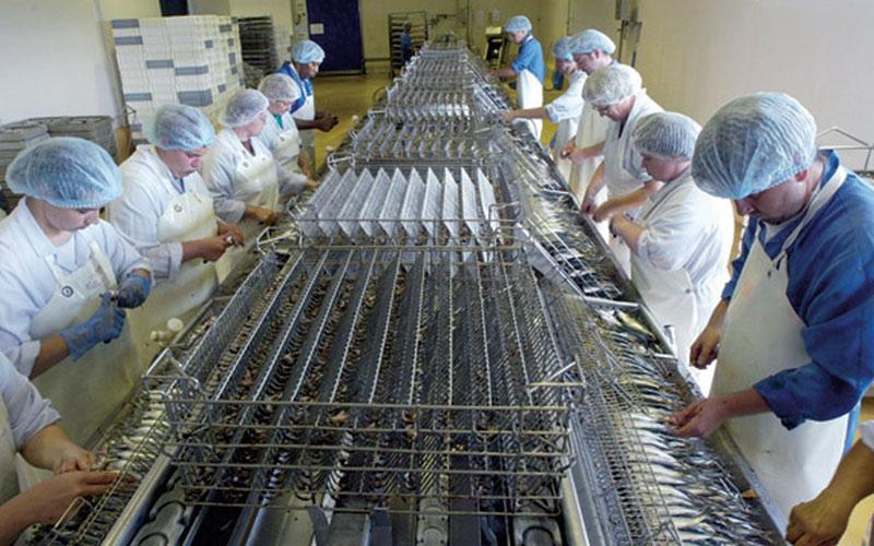  Industrie agro-alimentaire: Une nouvelle opportunité d'investissement au Maroc