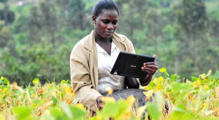 Afrique: Nécessité de multiplier les efforts pour encourager la numérisation