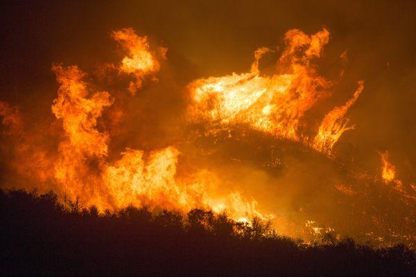 Algérie : Des dizaines de morts dans des incendies de forêts