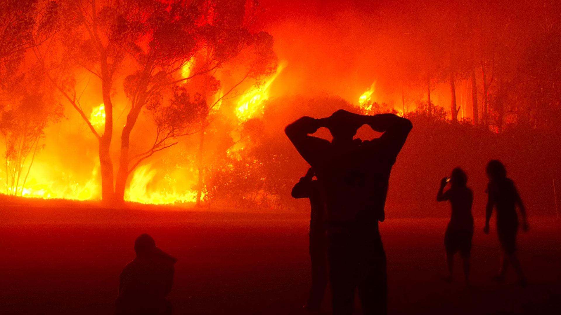 Incendies de forêts : Le pourtour méditerranéen proie des flammes