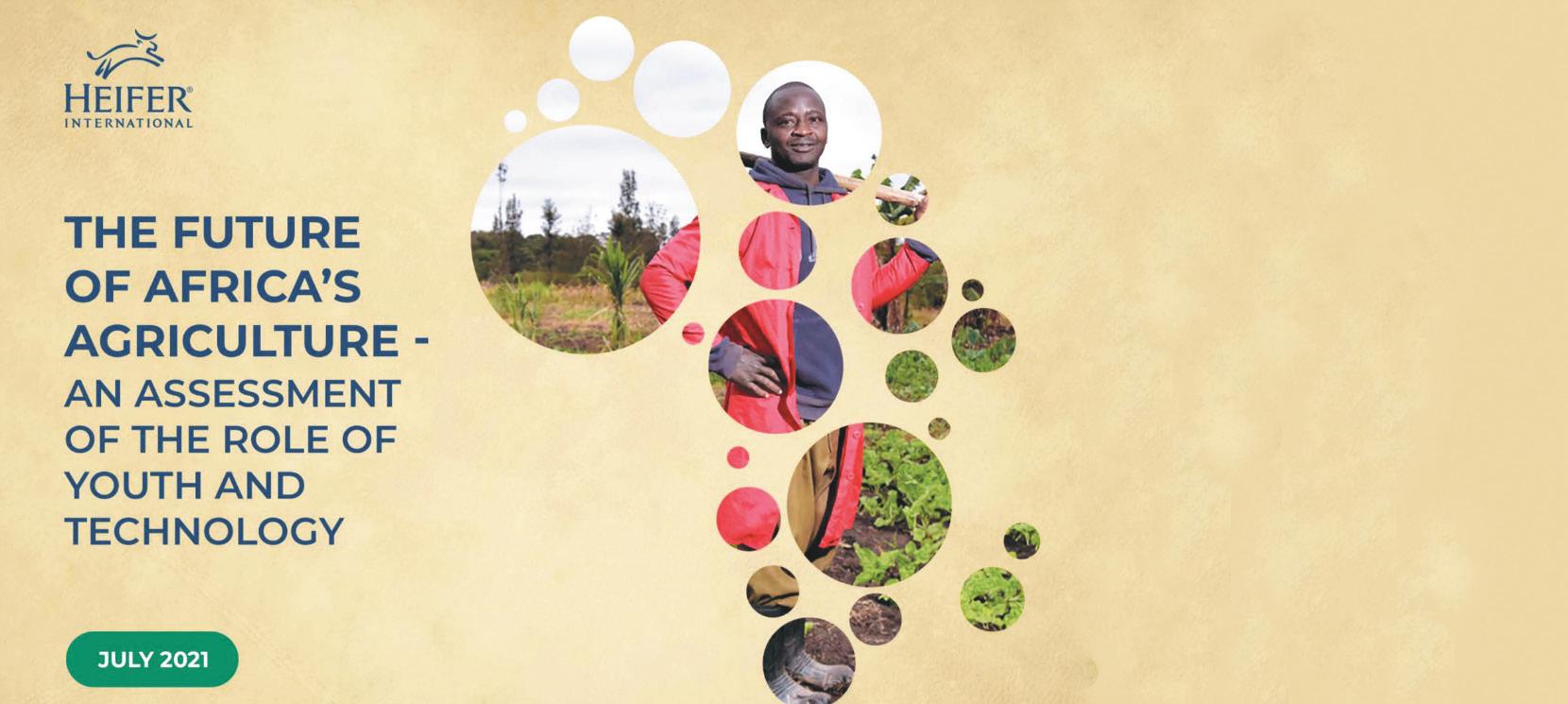 Afrique / Rapport sur les innovations agro-technologiques : Dynamiser le secteur pour offrir des opportunités aux jeunes