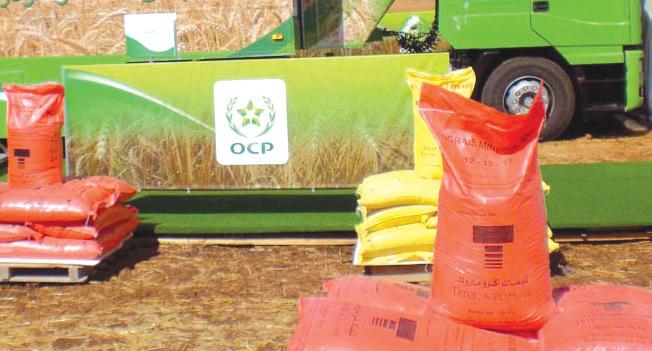 Phosphates : L'OCP blinde sa conquête de l'Ethiopie