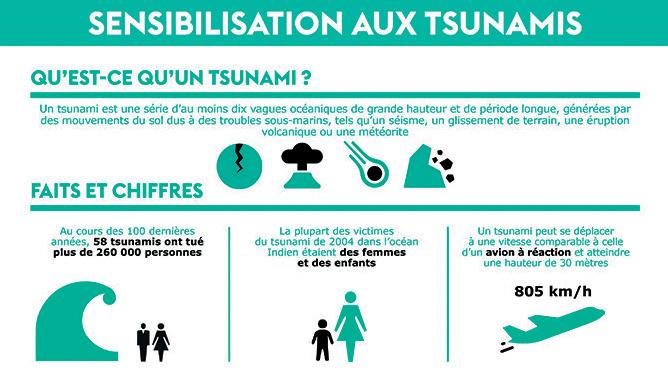 Éruptions volcaniques aux Canaries : Vrai ou faux risque Tsunamique sur le littoral Atlantique ?