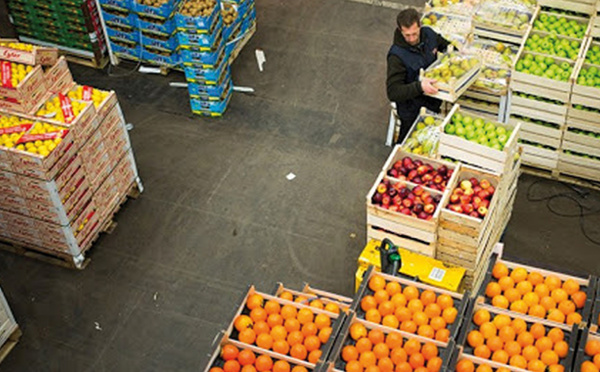 Malgré la crise, les exportations marocaines de produits maraîchers augmentent