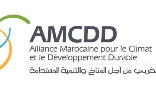 Nouveau modèle de développement : L'AMCDD appelle à un plan global de réformes