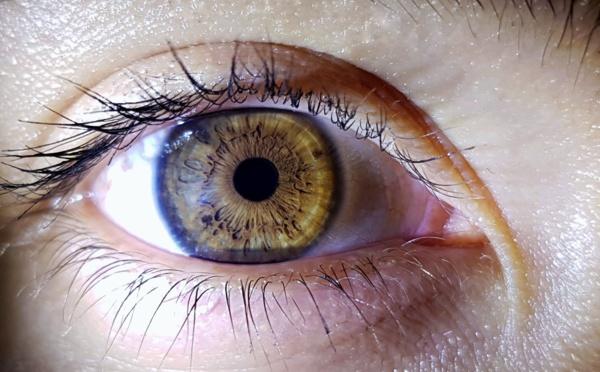 Les yeux, carte d'identité du futur ?