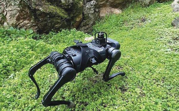 Intelligence artificielle: Facebook essaie d'humaniser les robots