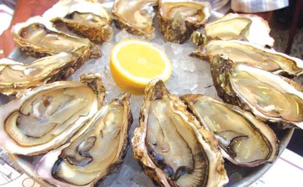 Oualidia : L'huître se porte bien face à la pandémie !