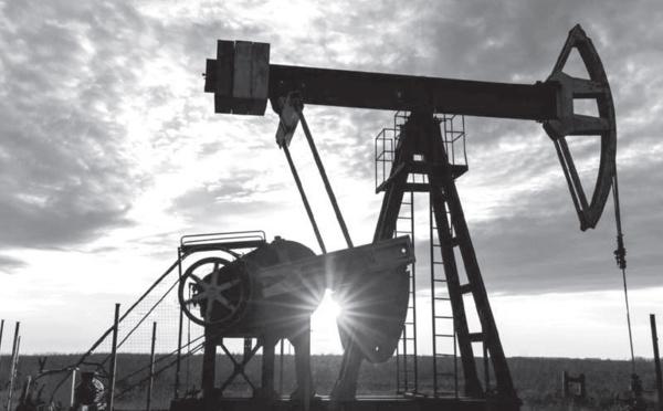 Réchauffement climatique : Ryad et Manama annoncent la neutralité carbone d'ici 2060