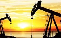 La guerre des prix du pétrole