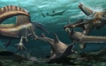 Une nouvelle étude démontre que le spinosaure était aquatique
