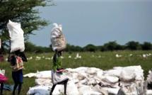 Sécurité alimentaire dans la région MENA : Le PAM tire la sonnette d'alarme