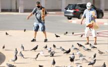Les R'batis prennent soin de nourrir les pigeons
