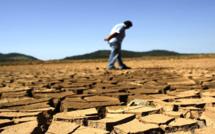 Lutte contre la désertification : un défi contemporain majeur