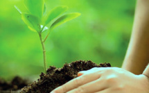 Midelt: une initiative pour accompagner les jeunes dans le domaine de l'entrepreneuriat vert