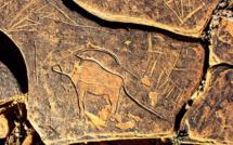 Art rupestre du Maroc : un patrimoine riche, menacé et peu valorisé