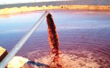 Béni Mellal-Khénifra : Les margines, véritable danger pour l'environnement