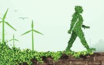 Startups vertes / Programme d'incubation : Le pari de l'African Youth Climate Hub