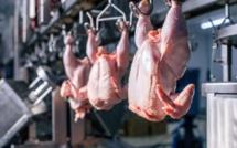 Les autorités françaises démentent l'interdiction de l'abattage halal des volailles