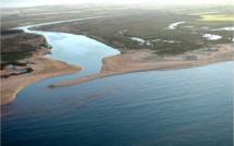 Embouchure de la Moulouya: Un site classé, sous la menace de l'assèchement programmé