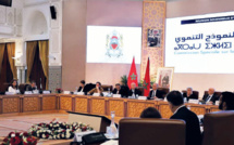 Commission Spéciale sur le Modèle de Développement: La culture dans un modèle de non-développement