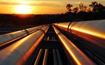 Hydrocarbures : Une OPEP du gaz siérait bien à Moscou